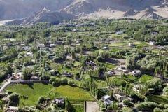 La valle verde con l'albero di pioppo e case in Leh Fotografia Stock Libera da Diritti