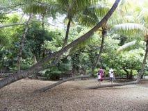 La Vanille nature park Stock Photo
