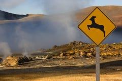 La vapeur géothermique exhale - des geysers d'EL Tatio - le Chili photo libre de droits