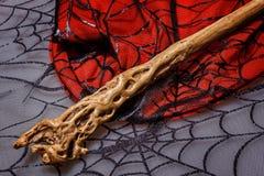 La vara mágica está en el web Foto de archivo libre de regalías