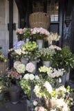 La variété colorée de fleurs s'est vendue sur le marché à Londres image libre de droits