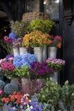 La variété colorée de fleurs s'est vendue sur le marché à Londres photos libres de droits