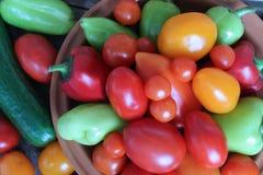 La variété de couleurs des légumes de récolte photo stock