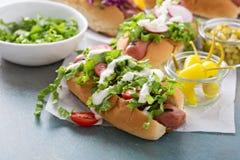 La variété de hot-dogs avec sain garnit Images stock