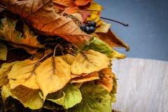 La variété de jaune d'automne part dans un panier de paille photographie stock libre de droits