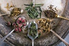 La variété de vert et les tisanes dans des cuillères sur le vintage metal le plateau Image libre de droits