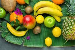 La varietà dell'assortimento di estate stagionale tropicale fruttifica limoni Kiwi Coconut Bananas delle arance del mango dell'an immagine stock libera da diritti