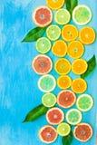 La varietà di arance affettate variopinte degli agrumi, pompelmi, limoni, calce con le foglie verdi su fondo blu, ha disegnato il Fotografia Stock