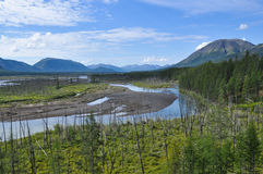 La vasta valle del fiume della montagna con un'alta scogliera Immagini Stock Libere da Diritti