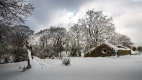 La vecchia cabina Fotografia Stock