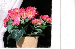 Vecchia casa del fondo con le finestre ed i fiori Fotografia Stock Libera da Diritti