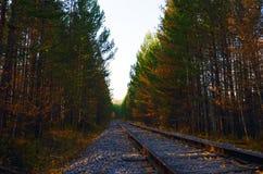 La vecchia ferrovia Immagini Stock