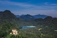 La vecchia foresta del castello del cigno Fotografie Stock