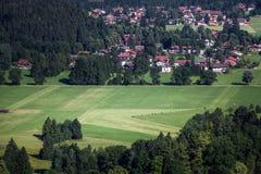 La vecchia foresta del castello del cigno Immagine Stock