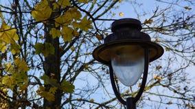 La vecchia lanterna Immagine Stock