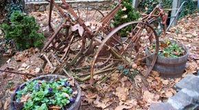 La vecchia macchina agricola rustica che si siede nella caduta va Fotografia Stock