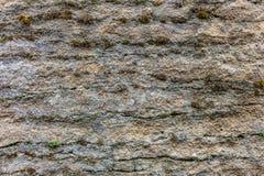 La vecchia parete del fondo di struttura della sabbia Fotografie Stock Libere da Diritti