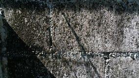 La vecchia parete di mattoni immagine stock