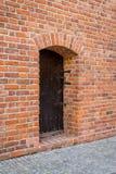 La vecchia porta con i ribattini Fotografie Stock