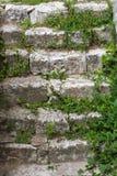 La vecchia scala di pietra Fotografie Stock