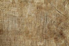 La vecchia sega di legno di struttura ha tagliato il fondo delle piste di SOS Immagini Stock