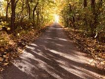 La vecchia strada nel pomeriggio di autunno Immagini Stock