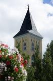 La vecchia torre attraverso il mazzo del fiore e la cima dell'albero Fotografie Stock
