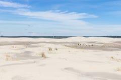 La vegetación en las dunas en Lagoa hace el parque nacional de Peixe imagen de archivo