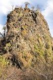 La vegetazione dell'aloe su una collina nel Madagascar del Nord Immagine Stock Libera da Diritti