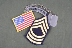 La vegetazione lussureggiante del sergente maggiore dell'ESERCITO AMERICANO, forze speciali cataloga, toppa della bandiera e meda Immagini Stock