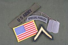 La vegetazione lussureggiante privata dell'ESERCITO AMERICANO, forze speciali cataloga, toppa della bandiera e medaglietta per ca Fotografia Stock