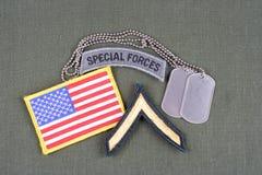 La vegetazione lussureggiante privata dell'ESERCITO AMERICANO, forze speciali cataloga, toppa della bandiera e medaglietta per ca Fotografia Stock Libera da Diritti