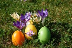 La vela de Pascua en forma del huevo entre la primavera florece Imagen de archivo
