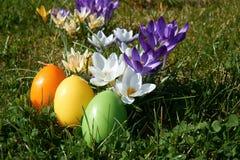 La vela de Pascua en forma del huevo entre la primavera florece Fotografía de archivo