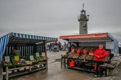La venta del marisco a lo largo de la costa del mar céltico Mercado del marisco de la mañana con las ostras fotos de archivo libres de regalías