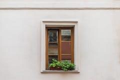 La ventana adornó la maceta Imágenes de archivo libres de regalías