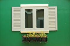 La ventana fue adornada con una planta en conserva Foto de archivo libre de regalías