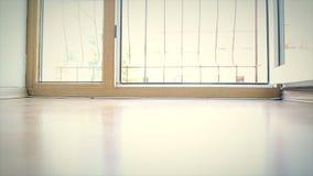 La ventana a la abertura y al closing de la luz del día almacen de metraje de vídeo