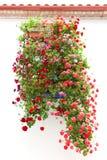 La ventana típica adornó las flores rosadas y rojas, EUR mediterráneo Imagen de archivo libre de regalías