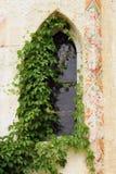 La ventana vieja. Imágenes de archivo libres de regalías