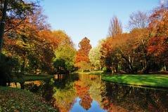 La venuta dell'autunno immagini stock libere da diritti