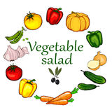La verdura ha impostato su priorità bassa bianca Fotografie Stock Libere da Diritti