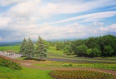 La verdure aménagent en parc pour le jardin d'agrément photo libre de droits