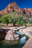 La Verkin Creek - Zion National Park. The La Verkin Creek Trail is in the Kolob Canyons area of Zion National Park stock image