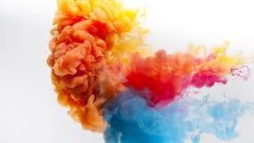 La versión reflejada y menos cosechada de colores rojos, amarillos y azules pinta el chapoteo en un fondo blanco fotos de archivo