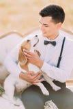 La verticale au-dessus du portrait du marié dans le costume de vintage choie le petit chien et se repose sur le sofa blanc dans Photos libres de droits