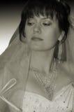 La verticale de la mariée Images libres de droits