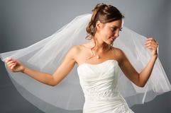 La verticale de la mariée romantique a couvert un voile Photo libre de droits