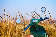La vespa parqueó en un campo de trigo cerca de la playa Fotos de archivo