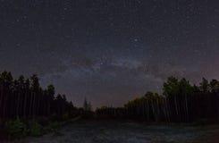 La Via Lattea sopra la foresta Immagine Stock